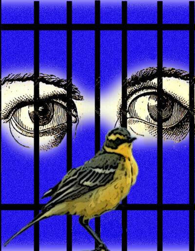 La preso,viure entre quatre parets